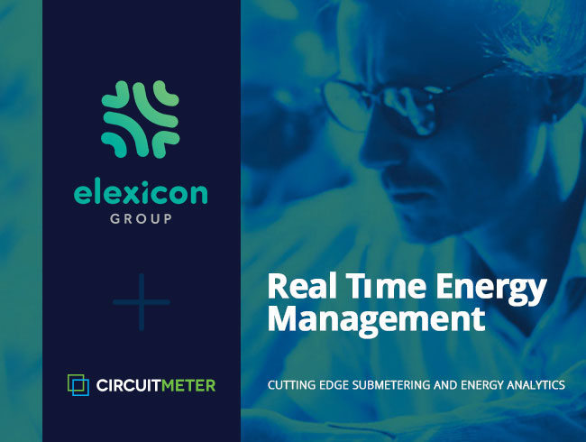 Elexicon and CircuitMeter RTEM.